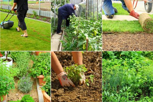 Грижа за градина